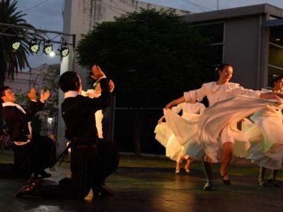 Cultura abre una convocatoria a artistas saenzpeñenses