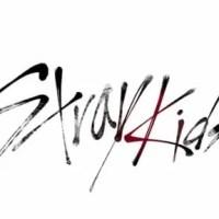 Stray Kidsストレイキッズメンバー人気順・年齢順プロフィール!脱落はなぜ?