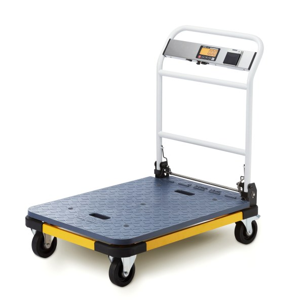 Go portable platform scales