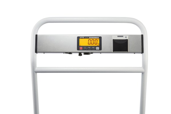 Go scales clear display