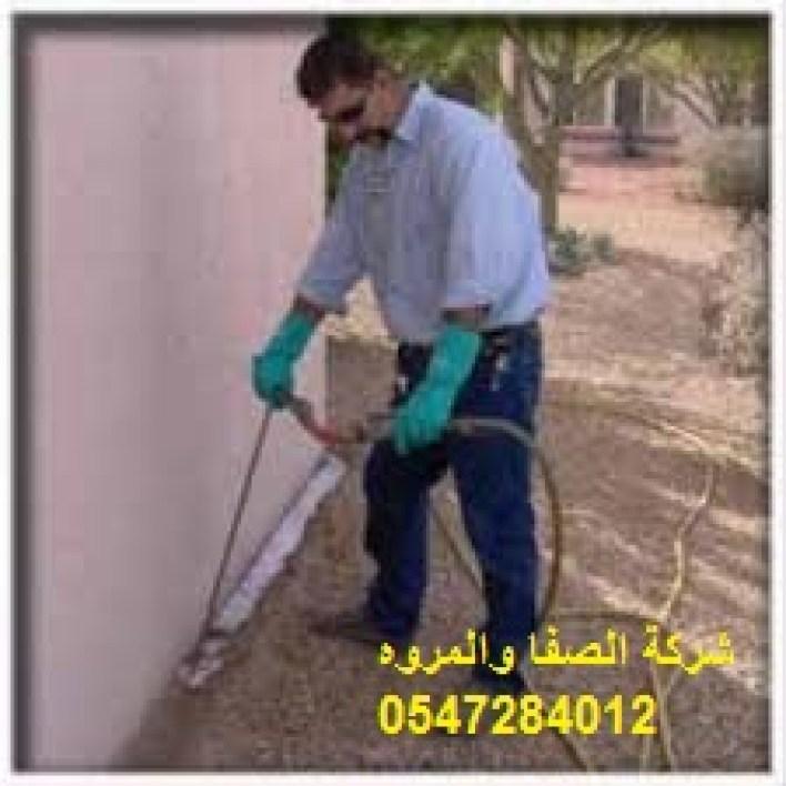 شركة-مكافحة النمل الابيض بالخبر
