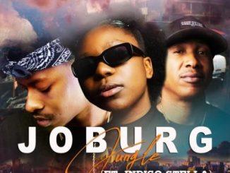 DJ Jawz & Luna Florentino JOBURG Jungle ft Indigo Stella Mp3 Download Safakaza