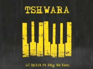DJ Split Tshwara ft Bkg Wa'Kasi Mp3 Download Safakaza
