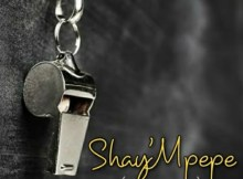 Muzzy D Pilot Shay'mpempe Amapiano Mix Mp3 Download Safakaza