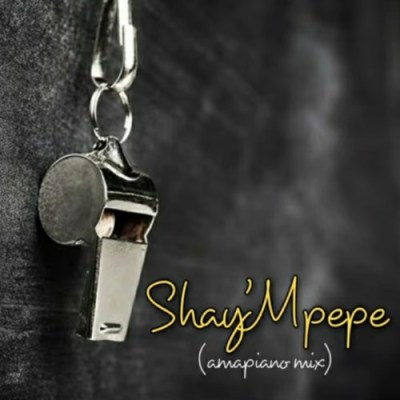 Muzzy D Pilot Shay'mpempe Amapiano Mix Mp3 Download Safakaza