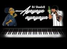 DJ ShadzO Ayeyeye Ayayaya Mp3 Download SaFakaza