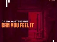 Dj Jim Mastershine Can You Feel It Mp3 Download SaFakaza