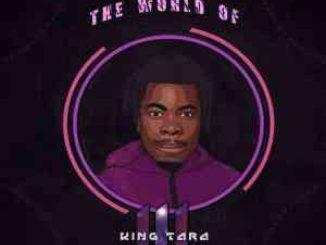 DJ King Tara The World Of King Tara 3 Album Zip Download