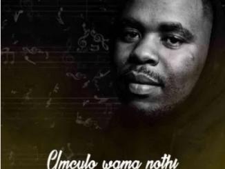 Luu Nineleven Bambolwami ft Zinhle Manyathi & Mellow Soul Mp3 Download SaFakaza