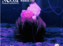 Noom Purple Neon ft Marie Jay Mp3 Download SaFakaza