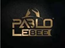 Pablo Le Bee 30 Mins Mix February Editiion Mp3 Download SaFakaza