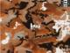 Shane Eagle Ammo ft YoungstaCpt Mp3 Download SaFakaza