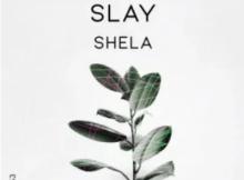 Slay SA Shela Original Mix Mp3 Download SaFakaza