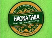 Zinkz Dee Haona Taba ft Malome Vector Mp3 Download SaFakaza