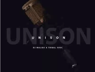 DJ Malibu & Tribal Soul Unison Mp3 Download SaFakaza