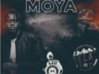 Stilo Magolide Choosey Mp3 Download SaFakaza