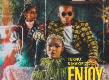 Tekno & Mafikizolo Enjoy Remix Mp3 Download SaFakaza