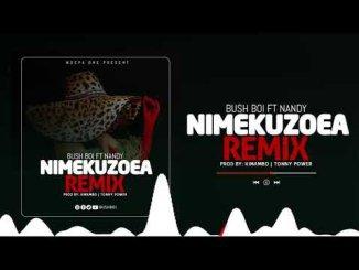 Bush Boi Ft Nandy – Nimekuzoea Remix
