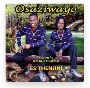 Osaziwayo Indoda Eyodwa Mp3 Download Safakaza