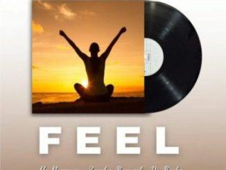 Mac Norman, DJ Bucks & Zander Baronet Feel Mp3 Download Safakaza