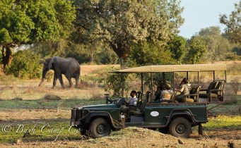 Game drive in Zambia