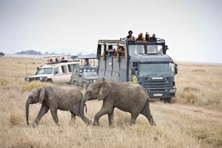 Safari en Camión