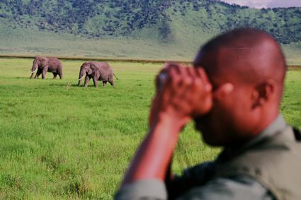 Ngorongoro. Tanzania. Abril de 2004