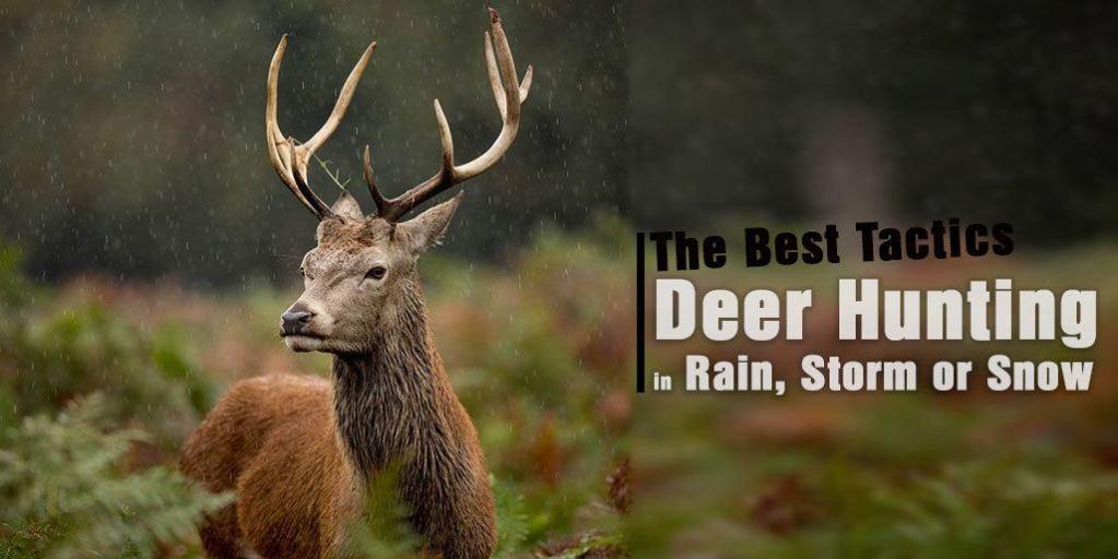 Deer Hunting in Rain, Storm or Snow