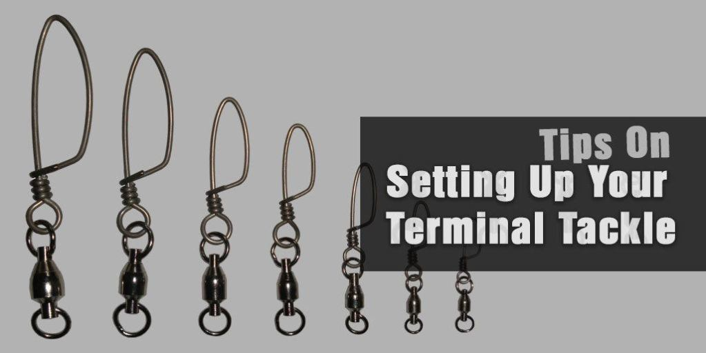 Setting Up Your Terminal Tackle