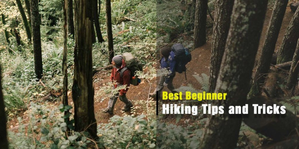 Beginner Hiking Tips and Tricks to Follow