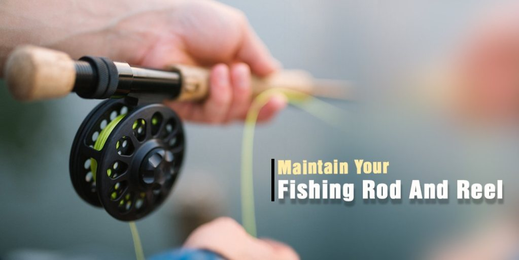 Maintain Your Fishing Rod And Reel