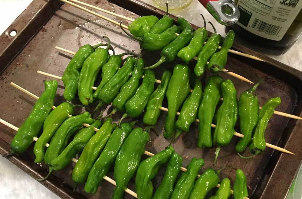 Blistered Shishito Chilies for camping