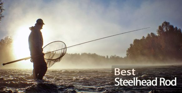 Best Steelhead Rod for Salmon