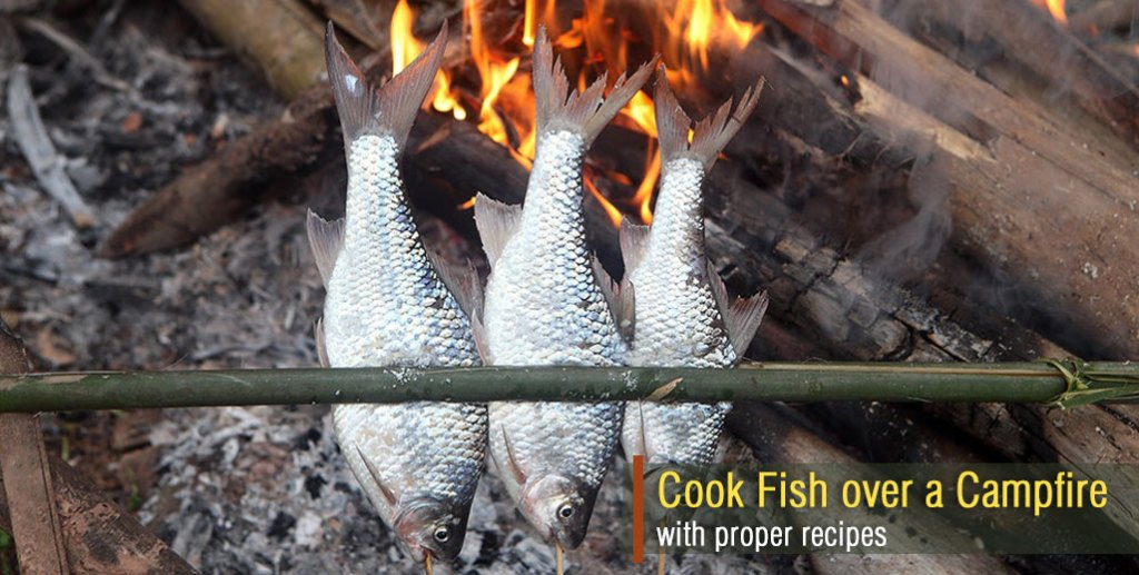 How to Cook Fish over a Campfire with Proper Recipes
