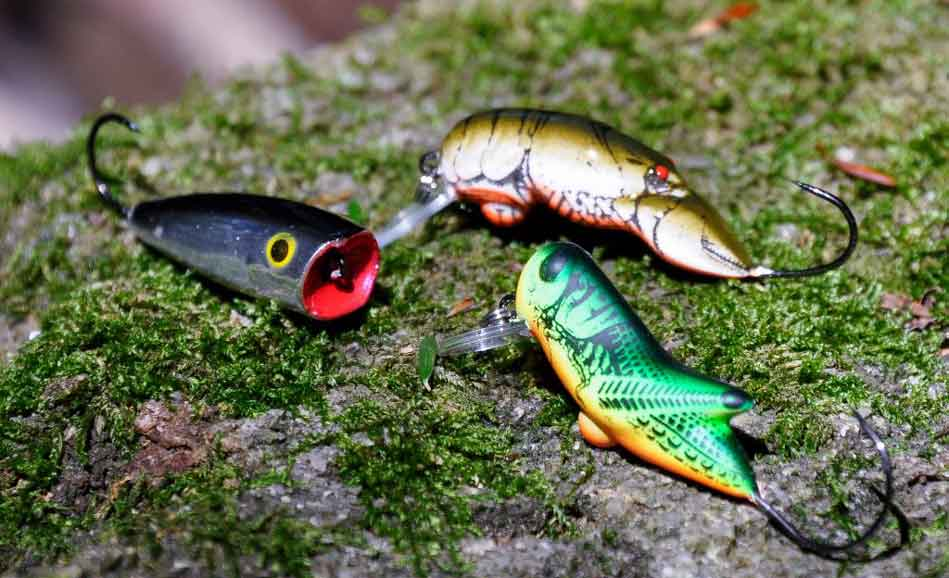 Tackle for Trout Fishing