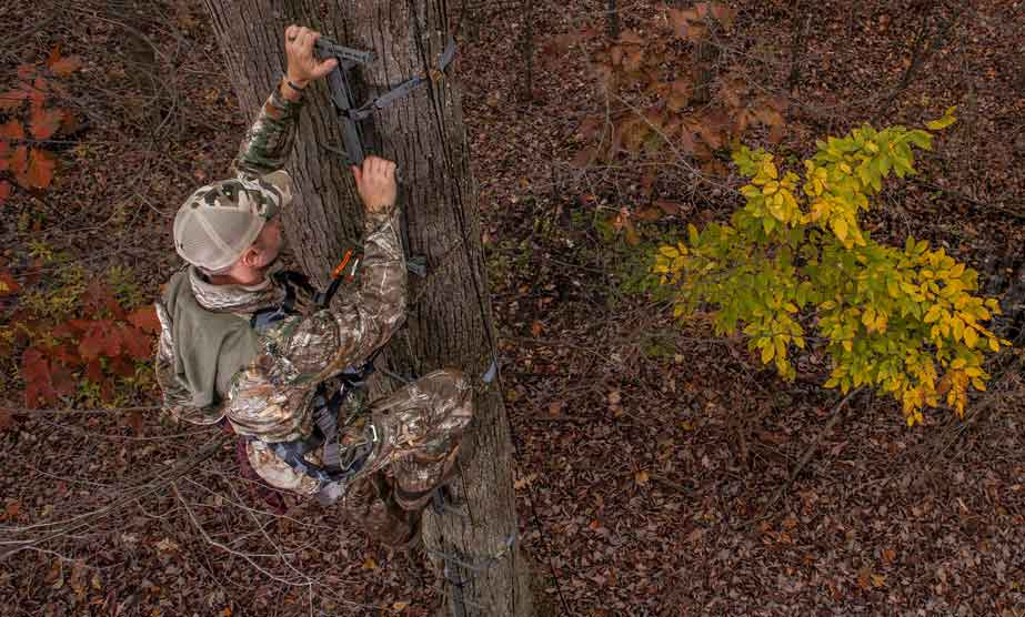 Best Climbing Sticks for Hunting