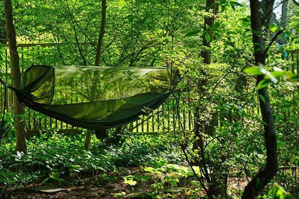 Buyer's Guide for the Best Hammock Bug Nets