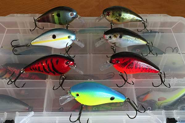 Which Color of the Crankbaits Do You want