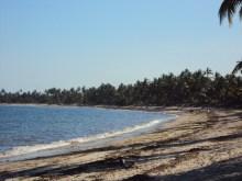 pangani ushongwe beach