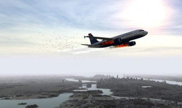 birdstrike_exosphere