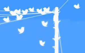 Twitter logo as a flock of birds