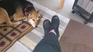 Freelancer tools: Dog, shoes, gas heater