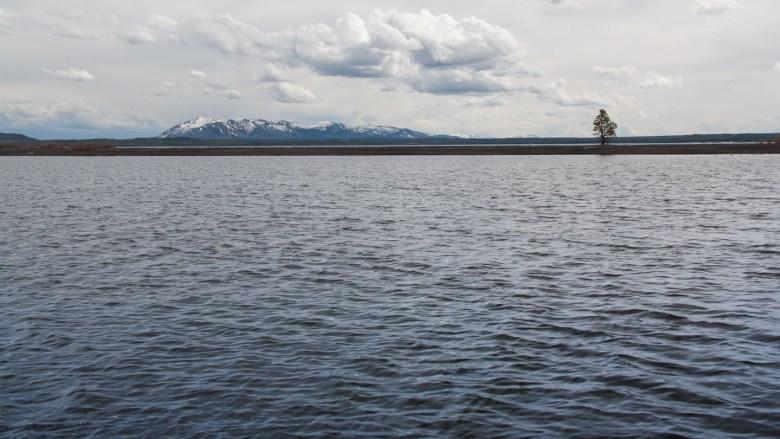 Am Lake Yellowstone