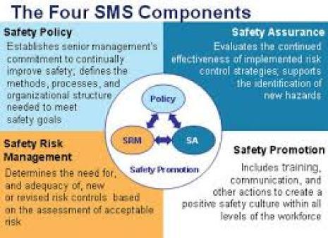 Image result for safety management system