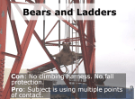 Bears teaching us about ladder safety