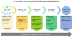 Building Cultural Maturity in Safety and Risk
