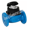 Water Meter Type Woltex