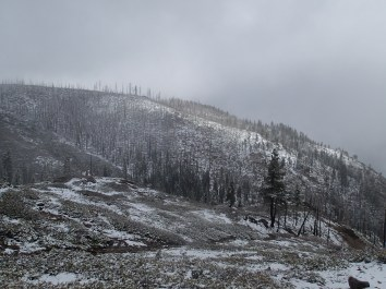 Snowy burned lanscape on the Rim Fire