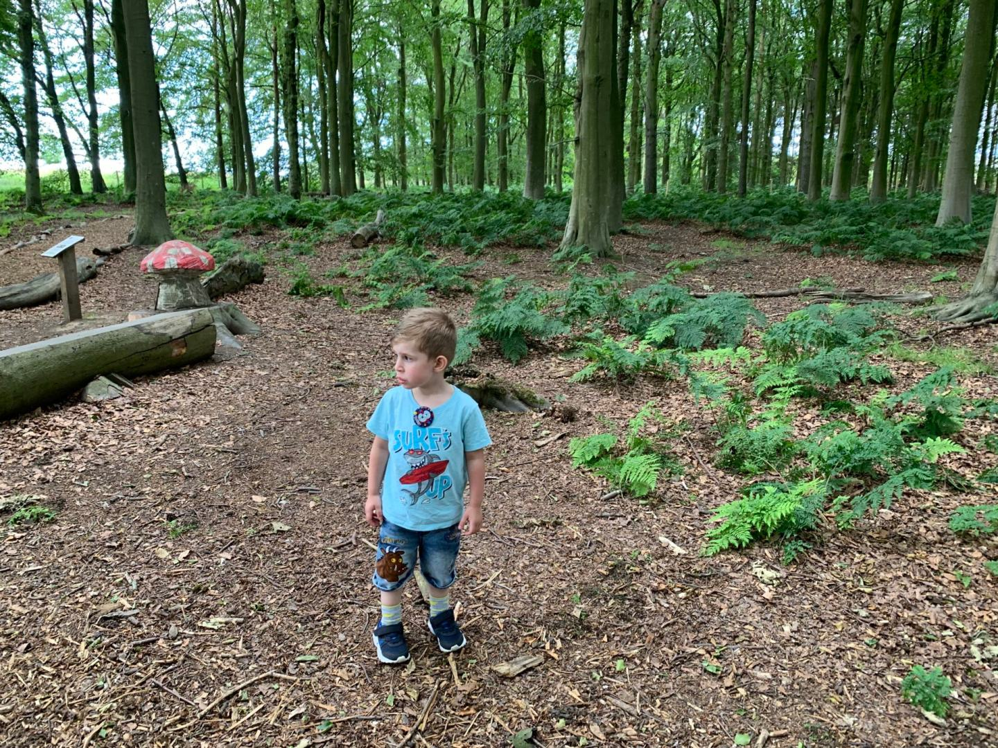 toddler's guide to going wild in the countryside