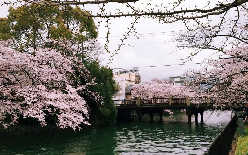 Postcard from Japan {in progress..}
